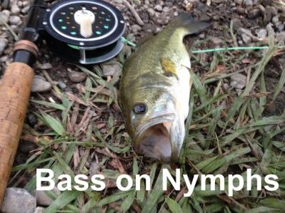 Link: http://globalflyfisher.com/fish-better/bass-on-buzzers
