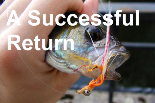 Link: https://concretestreams.com/2015/08/01/a-successful-return-a-first-post/